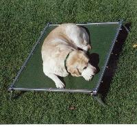 Rectangular Trampoline Dog Bed