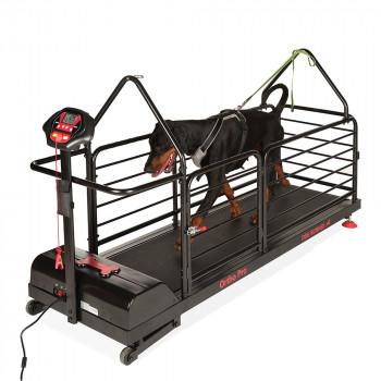 Dog Runner Ortho Pro