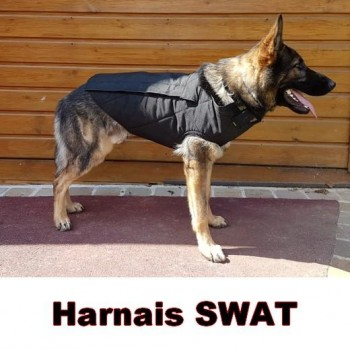 Morin SPECIAL SWAT Harness