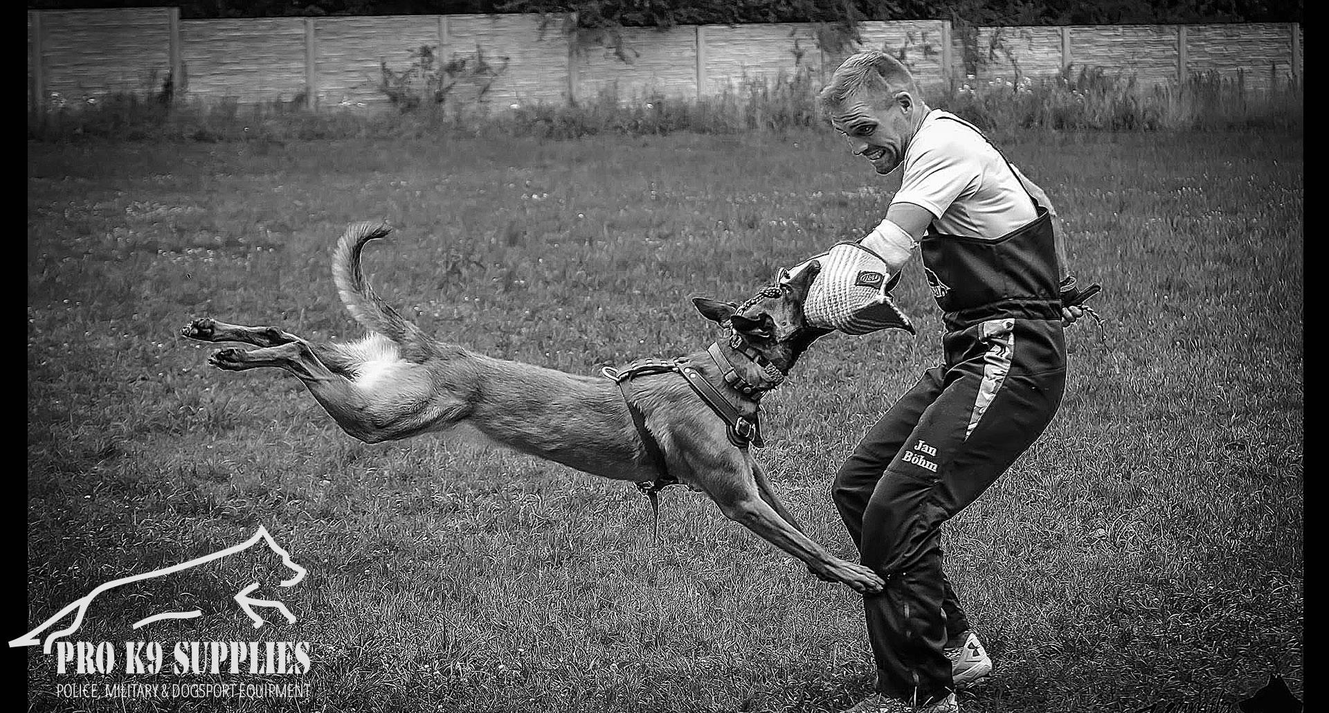 dog-bite-training-equipment