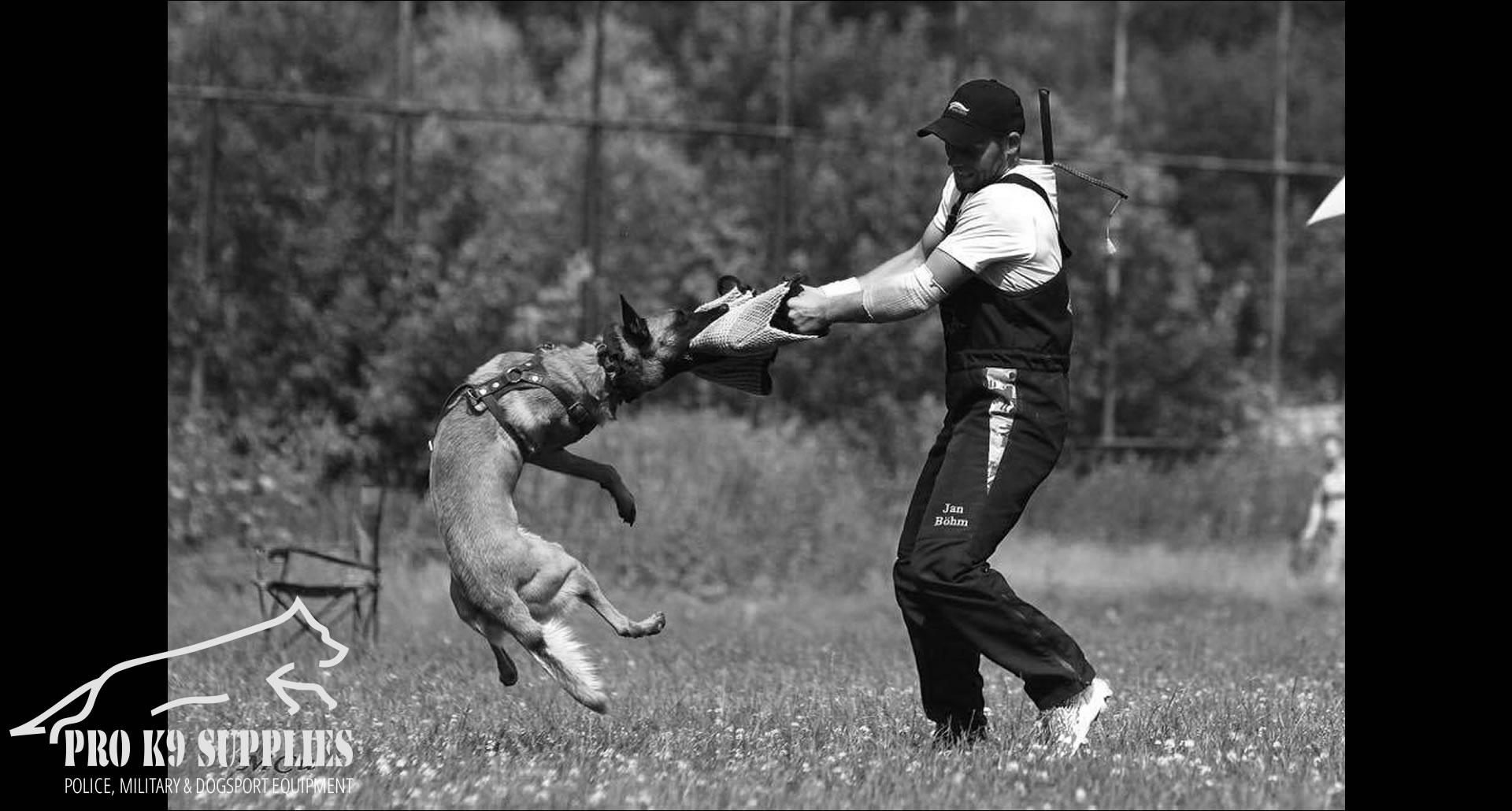 guard-dog-training-equipment