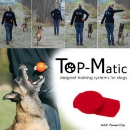Magnetic Training Systems