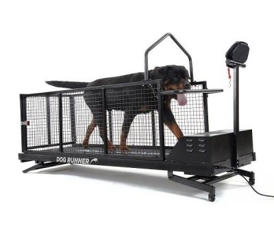 Dog Runner Treadmill