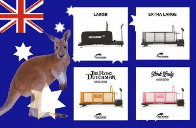 Pro K9 Supplies Is Now the Exclusive Representative for Dog Runner Treadmills in Australia